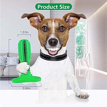 Brosse à Dents Bâton Chien, jouet à mâcher pour chien avec fonction de soin des dents pour le nettoyage des dents, non toxique bitproof, caoutchouc pour petits chiens, cadeau pour amoureux des animaux