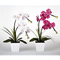 Floristlighting - Orquídea artificial con luz LED, funciona con pilas, con 9 luces