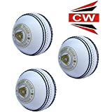 CW All White Sports Spin Incredible Poly Soft Synthetic PVC Indoor/Outdoor Game Matches (THREE CRICKET BALL) Multipurpose General Practice/Training/Matches/Coaching Genuine Ball Standard Size Same Like Leather Ball In Pack Of 3 Ideal For Men's/Adult/Youth