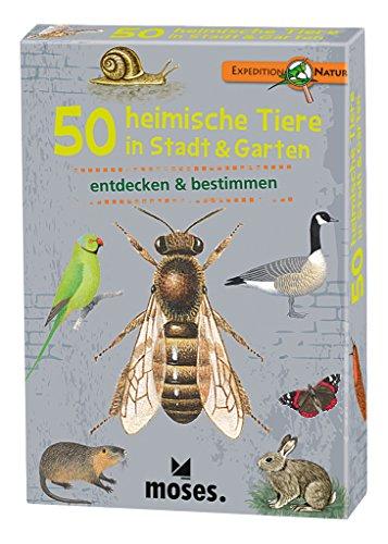 moses. Expedition Natur - 50 heimische Tiere in Stadt und Garten | Bestimmungskarten im Set | Mit spannenden Quizfragen