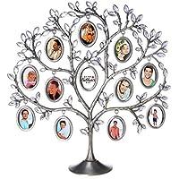 Amazones El Arbol Genealogico De La Familia Incluir No