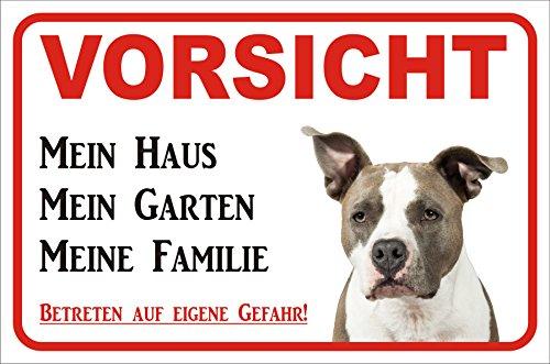 Schild Vorsicht American Pit Bull Terrier