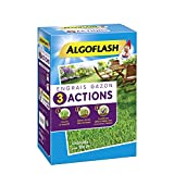 ALGOFLASH Engrais Gazon 3 Actions