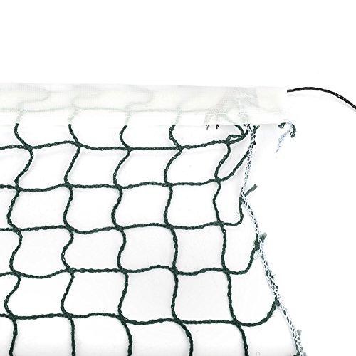 Dilwe Badminton Rete Regolabile Rete da Tennis Badminton Portatile Pieghevole Standard per Sport all'Aria Aperta 2 Colori(Verde)