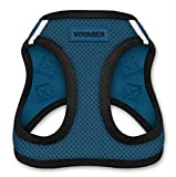 Voyager All Weather No Pull Step-in Mesh Dog - Best Reviews Guide