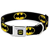 Man Dog Collars - Best Reviews Guide