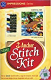 Anchor Stitch Kit - Carnival Time