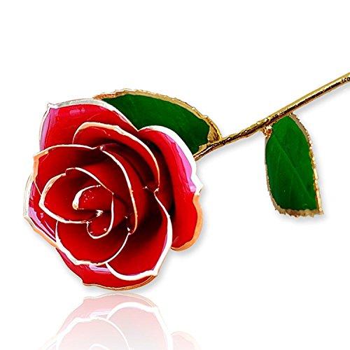 Perfekt Itian 24K Gold Getauchte Echt Rote Rose, Liebe Geschenk Für Ihre Freundin /  Frau Für Geburtstag, Weihnachten, Valentinstag Jahrestag (Rot)