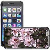 "Just Phone Cases Etui Housse Coque de Protection Cover Rigide pour // M00128228 Almendro Flor del almendro // Apple iPhone 6 PLUS 5.5"""