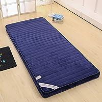 D&LE Tatami Estera de meditación, Acolchado Respirable Multifunción Japonés Colchón Plegable Multi-Size Estéreo