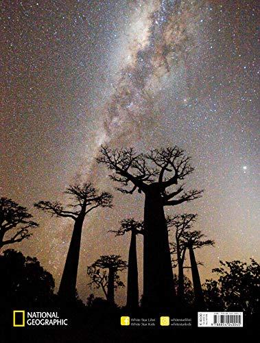 Zoom IMG-1 alberi tra cielo e terra