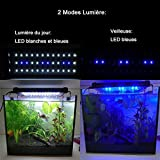 NICREW LED Aquarium Beleuchtung, LED Aquarien-Aufsetzleuchte Passend für Aquarien von 30cm-48cm, 6W - 7