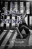 A Tragic Wreck (Beautiful Mess Book 2) (English Edition)