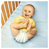 Pampers Baby-Dry 144 Nappies with 3 Absorbing Channels, 11 - 23 kg, Size 5 Bild 4