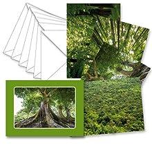 Papier & Geschenke - Scatola per biglietti di auguri, in cartone, 19 x 13,5 x 3 cm, colore: Verde