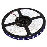 LEADSTAR 5M 300 LEDs 5050 Flexible LED Strip Licht Streifen 12V IP65 Wasserdicht - Kaltweiß