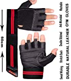 Xtrim Unisex Leather Macho Workout Gloves (Medium, Black)