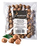 Minotaur Spices Noce Moscata Intera | x 2 250g (0.5 kg) | Circa 124 Pezzi