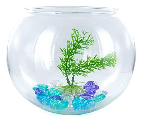 Aquarium-Set 2,8 l inkl. Deko-Kies und Pflanze Goldfisch-Glas Zubehör Fisch-Becken Glas-Becken Glas-Aquarium