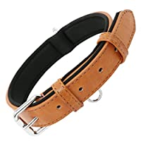 Grand Line Dog Collar Adjustable Neoprene Padded Leather Available in 4 Sizes & 1 Color, Brown