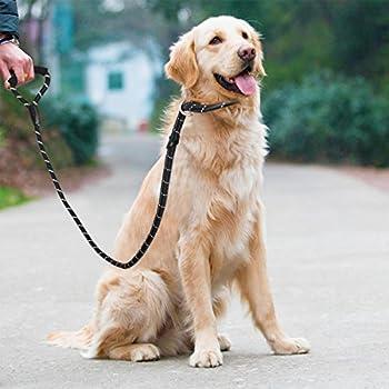 UEETEK Chien Choke Laisse Corde d'entraînement Laisse de Glissement pour Chien P-Laisse Réfléchissant et Durable Laisse Ddapté à Running Walking Hiking