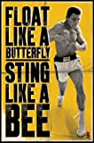 Muhammad Ali - Float Like A Butterfly - Maxi Poster - 61 cm x 91.5 cm
