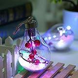SPECOOL Weihnachtsdekoration Ball,Fantastische Weihnachten Transparente Kunststoffkugel mit Einem Licht Weihnachtskugel Baum Party Dekoration Zubehör