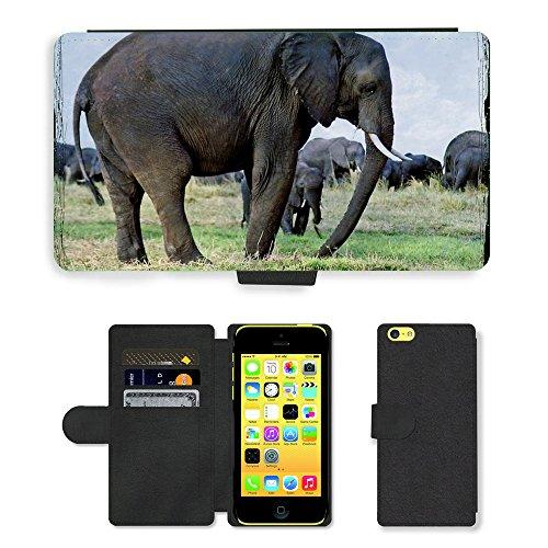 Just Mobile pour Hot Style Téléphone portable étui portefeuille en cuir PU avec fente pour carte//m00138732éléphants Animaux Namibie Safari//Apple iPhone 5C