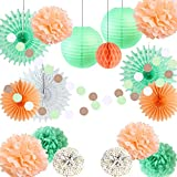 Easy Joy Decoration Peche Mariage Deco Salle Suspendre Boule Papier Fleur Pompom de Soie Lanterne Menthe Orange pour Bapteme Baby Shower Anniversaire Chambre Fete - 17pcs