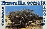 Gall Pharma Boswellia Serrata 400 mg GPH indischer Weihrauch Tabletten, 1er Pack (1 x 100 Stück)