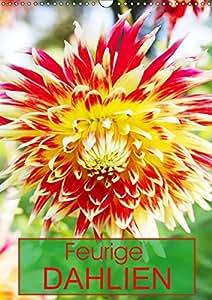 Feurige Dahlien (Wandkalender 2019 DIN A3 hoch): Strahlend schöne Spätsommerblumen (Monatskalender, 14 Seiten ) (CALVENDO Natur)