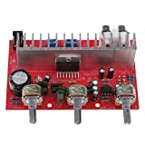 D DOLITY 80w DC 12-24V Verstärker Platine Endstufenmodul Audio Power Supply Amplifier Modul