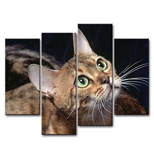 4Stück Wand Kunst Bild niedlicher Katzen 4Bilder Drucke auf Leinwand Tier der Decor Öl für Home Moderne Dekoration Print