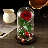 """YSBER """"Beauty and the Beast"""" Red Silk Rose and LED Light with Fallen Petals in Glass Dome on a Wooden Base (Color Lamp Rose Shade)"""