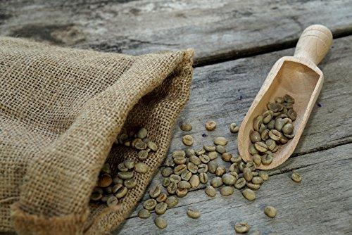 500 g Arabica Rohkaffee - Grüner Kaffee roh Spitzenkaffee Kaffeebohnen