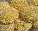 Champignon à champignon blanc Tremella Premium 1100 grammes