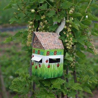 5 Bioboxen für den biologischen Pflanzenschutz für Nützlinge
