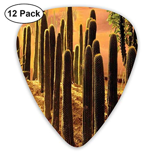 Guitar Picks - Abstract Art Colorful Designs,Sunset In Wild Nature Hot Desert Botanic Mexican Trees Leaves Sand Photo Image,Unique Guitar Gift,For Bass Electric & Acoustic Guitars-12 Pack -