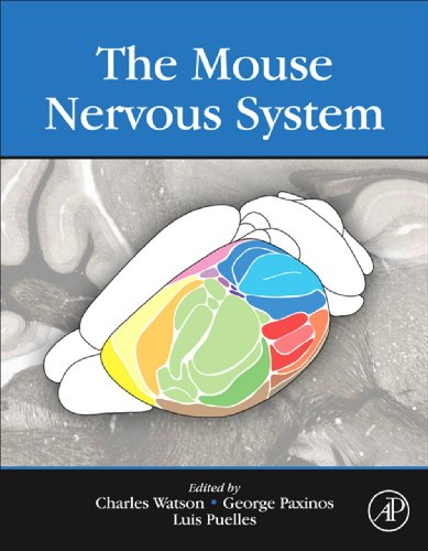 The Mouse Nervous System