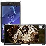 GoGoMobile Etui Housse Coque de Protection Cover Rigide pour // M00124809 Perro dálmata Jefe mascotas Raza Canina // Sony Xperia Z2 L50W
