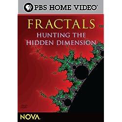 Nova: Fractals - Hunting the Hidden Dimension [Reino Unido] [DVD]