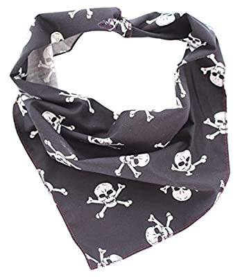 Pet Pooch Boutique Skulls Bandana for Dog, Small/Medium, Black from Pet Pooch Boutique