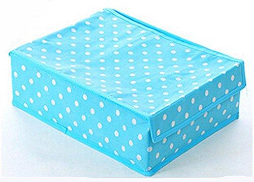 box-doppio-finitura-detriti-scatola-di-immagazzinaggio-della-biancheria-intima-di-immagazzinaggio-de