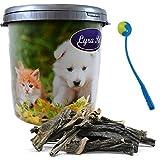Lyra Pet 10 kg Rinderpansen 12-15 cm Kausnack in 30 L Tonne + Ballschleuder