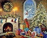 WAFJJ Dipingere con i Numeri Adulti Babbo Natale Adulti Principianti Pittura Tela Kits per Dipinto a Olio da dipingere seguendo i Numeri 16 * 20 Pollici Decorazioni Regali (Senza Cornice)
