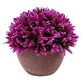 Generic Künstliche Glück Gras Pflanze Blätter Vergießen Bonsai im topf Blumen Garten Hause Deko - Rot