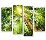 islandburner Bild Bilder auf Leinwand Leuchtender Wald Sonne Bäume 4er XXL Poster Leinwandbild Wandbild Dekoartikel Wohnzimmer Marke