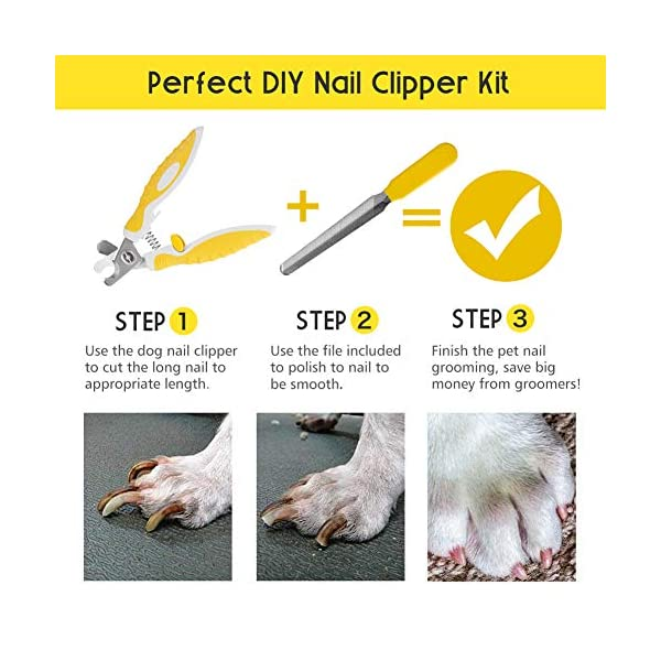 Dog Nail Clippers Trimmers with Safety Guard for Small Medium Dogs Claw Clippers, Pet Nail Cutters for Thick Nails with Free Nail File & Dog Toothbrushes 6