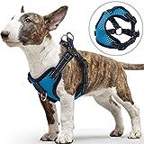 PETBABA Hundegeschirre für Kleine Hunde, Vorne Reflektierend Weich Air Mesh Verstellbar Brustgeschirre für Hunde - M in Blau