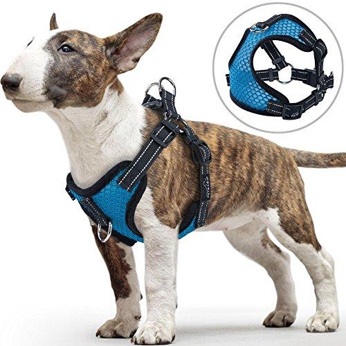 Hundegeschirre für Kleine Hunde, PETBABA Vorne Reflektierend Weich Air Mesh Verstellbar Brustgeschirre für Hunde - S in Blau (Leine Charles Cavalier King)